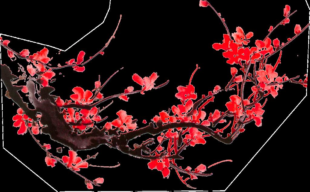 flower3039