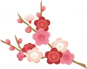 flower5497