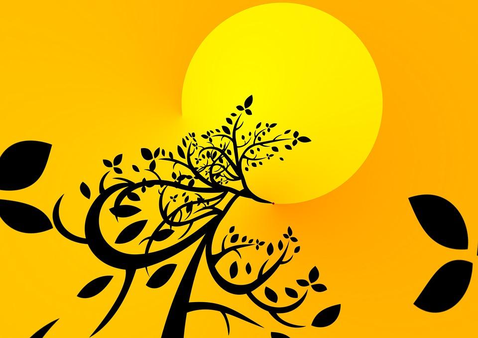 tree-707673_960_720