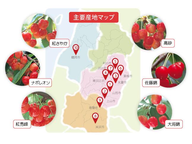 yamagata_tabi_sakuranbo_map